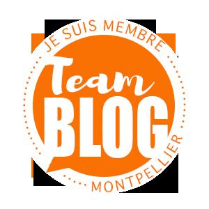 teamblog montpellier